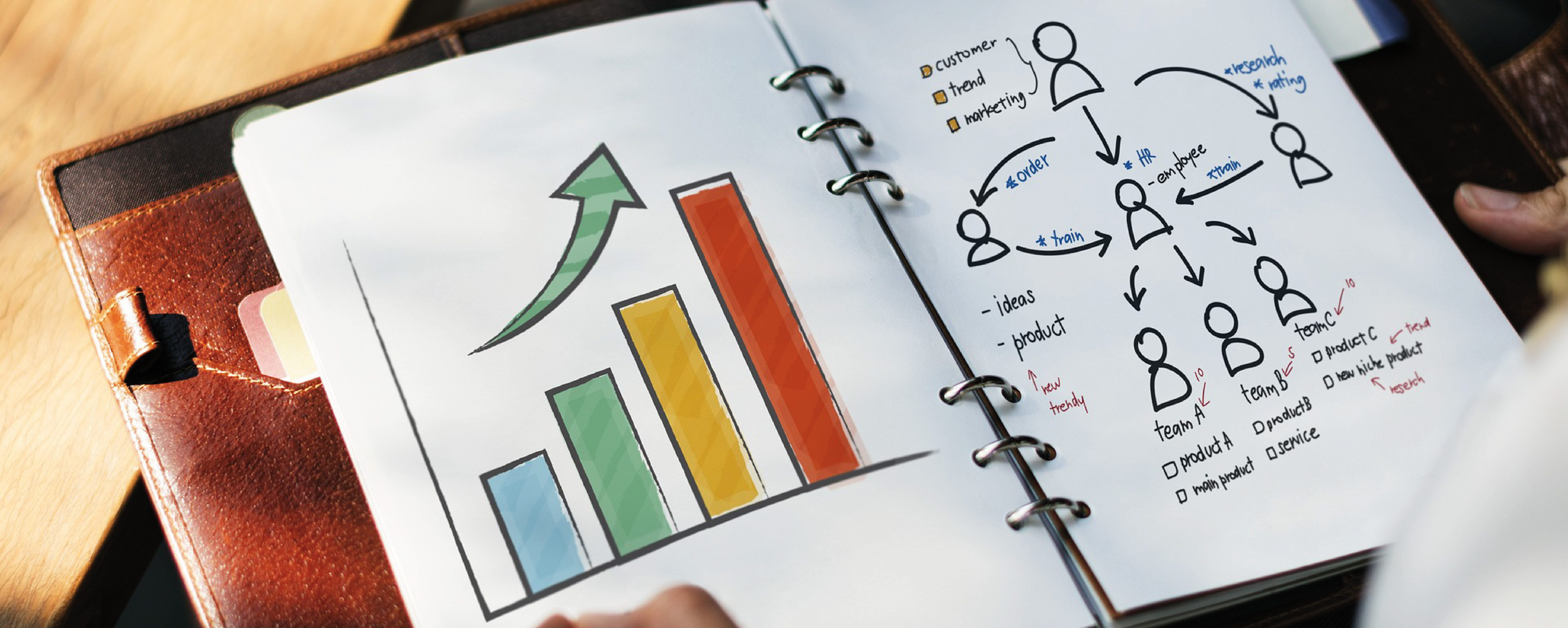 Diferentes gráficos que representan a la investigación de mercados